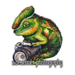 logo; sbruenner photography